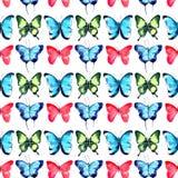 美好的明亮的老练壮观的美妙的嫩柔和的春天热带绿色红色蓝色紫色蝴蝶图案 皇族释放例证
