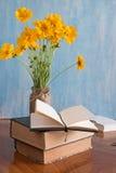 美好的春天在有书的一个花瓶开花 免版税库存照片