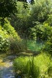 美好的晴朗的夏日在Krka国家公园克罗地亚欧洲 免版税库存图片