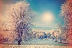 美好的晴朗的早晨在城市公园 33c 1月横向俄国温度ural冬天 免版税库存照片