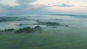 美好的有薄雾的黎明在春天在河的 股票录像