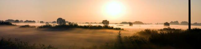 美好的有雾的横向早晨 免版税库存照片