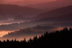 美好的有雾的风景 与暮色日出的冷的有薄雾的有雾的早晨在漂泊瑞士公园秋天谷  小山机智 免版税库存照片