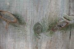 美好的木纹理 库存图片