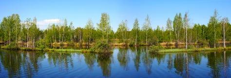 美好的本质全景风景 免版税库存照片