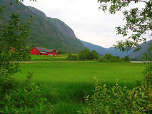 美好的本质挪威 免版税库存图片