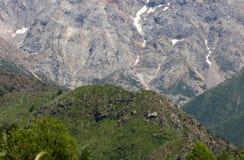 美好的本质 卡扎克斯坦山 图库摄影
