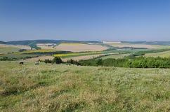 美好的村庄风景在北保加利亚 免版税库存照片
