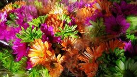 美好的束五颜六色的花 免版税图库摄影
