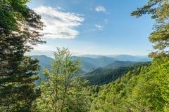 美好的树木繁茂的山峰的美妙的看法 免版税库存照片