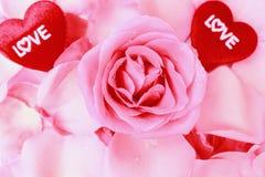 美好的桃红色玫瑰和心脏为情人节。储蓄照片。 免版税库存照片