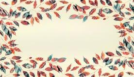 美好的框架由秋天制成上色了分支和叶子在淡色背景 平的位置 免版税库存图片