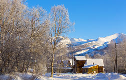 美好的横向农村冬天 库存照片