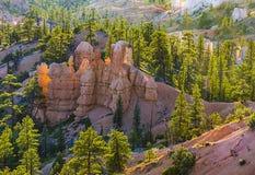 美好的横向在与壮观的石forma的Bryce峡谷 免版税库存照片
