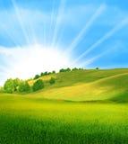 美好的横向夏天 免版税库存照片