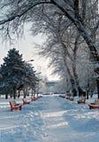 美好的横向多雪的冬天 免版税图库摄影