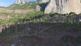 美好的横向山夏天日出 射击 全景场面岩石峭壁和青山 股票视频