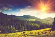 美好的横向山夏天日出 图库摄影