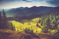 美好的横向山夏天日出 免版税库存图片