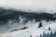 美好的横向山日出冬天 日出 与雾和雪的Carpatian谷 喀尔巴阡山脉的冬天山 早morni 库存照片
