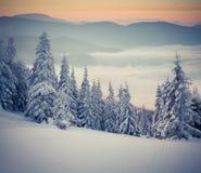 美好的横向山日出冬天 库存图片
