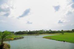 美好的横向本质 绿色领域、棕榈树、植物和湖浇灌 恶劣天气在途中 有风 阿鲁巴海岛 免版税图库摄影