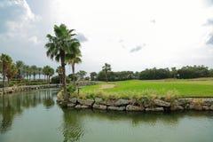 美好的横向本质 绿色领域、棕榈树、植物和湖浇灌 恶劣天气在途中 有风 阿鲁巴海岛 库存照片