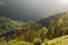 美好的横向本质 深绿色山日落 库存图片