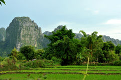 美好的横向老挝vang vieng 免版税库存照片