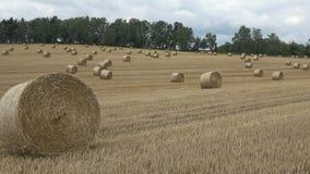 美好的横向 农业域 在领域的圆的捆绑秸杆大包 股票录像