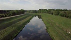 美好的横向 河在夏天 股票录像