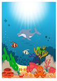 美好的水下的世界动画片 皇族释放例证