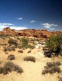 美好的沙漠形成晃动场面 库存图片