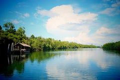 美好的河风景 库存照片