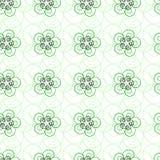 美好的浅绿色的卷曲线的无缝的样式 库存照片