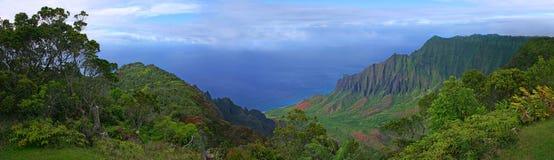 美好的海岸线夏威夷考艾岛视图 免版税库存图片
