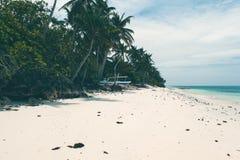 美好的海岸线,海的绿松石视图有棕榈树的, 免版税库存图片