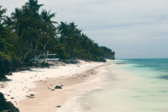 美好的海岸线,海的绿松石视图有棕榈树的, 免版税图库摄影