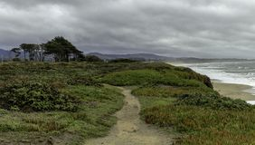 美好的海滨风景在加利福尼亚 库存照片