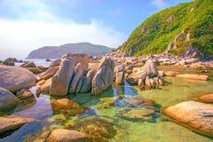 美好的海滩许多从被毁坏的岩石的高石头,树增长 库存图片