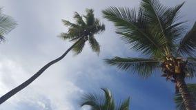 美好的海滩天 库存照片