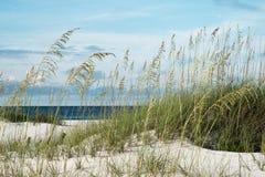 美好的海滩早晨 免版税库存图片