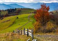 美好的深刻的秋天乡下场面 图库摄影