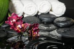 美好的温泉套与下落和开花的枝杈的禅宗石头 库存图片