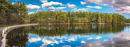 美好的湖反射 库存照片