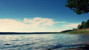 美好的湖横向 在充分的HD的欧洲风景 股票视频