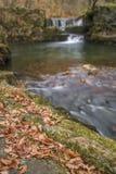 美好的瀑布风景图象在秋天秋天期间的森林里 免版税库存图片