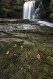 美好的瀑布风景图象在秋天秋天期间的森林里 库存图片