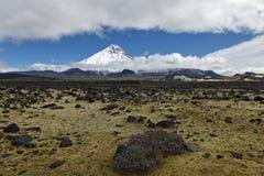美好的火山的风景-在卡梅尼火山火山和寒带草原的看法 俄罗斯,远东,堪察加半岛 免版税图库摄影