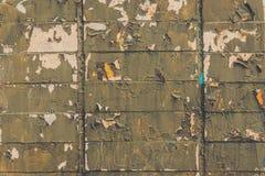 美好的灰色被剥皮的砖墙在春天 库存图片